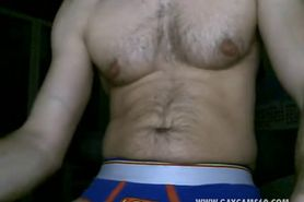 Attractive Hairy Bear Muscle Gay