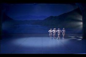 Swan Lake Nude