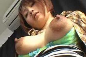 Asian tits II